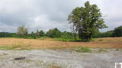 Ballard County Residential Lots & Land For Sale: 117 S Adkins Dixon Road