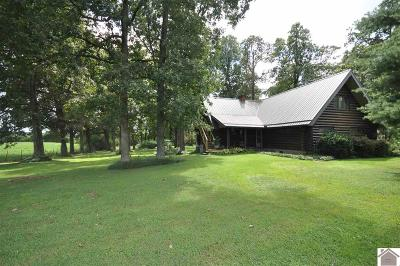 Marshall County Single Family Home For Sale: 1217 Vaughns Chapel Road
