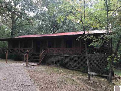 Lyon County, Trigg County Single Family Home For Sale: 143 Patrick