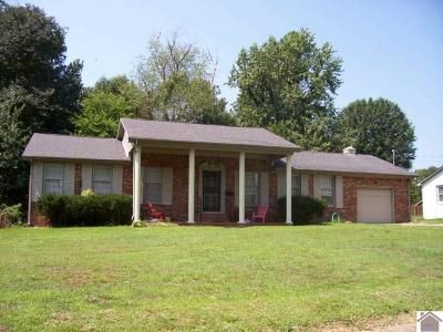 Mayfield Single Family Home Contract Recd - See Rmrks: 211 Terrace Drive