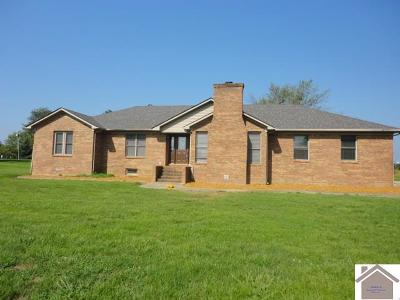 Graves County Single Family Home For Sale: 9382 St Rt 80 W