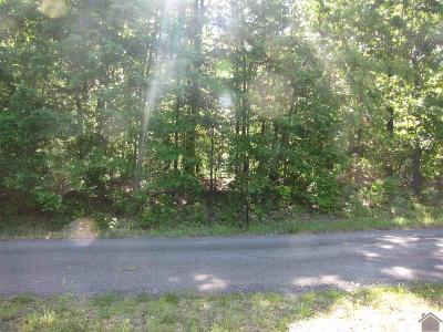 Gilbertsville KY Residential Lots & Land For Sale: $29,900