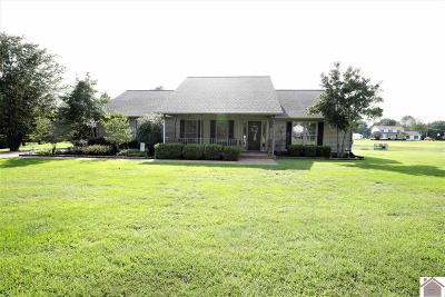 Paducah Single Family Home For Sale: 1975 S Friendship