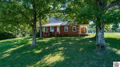 Calloway County Single Family Home For Sale: 106 Murray Paris Road