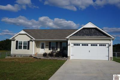 Calloway County Single Family Home For Sale: 273 John Purdom Drive
