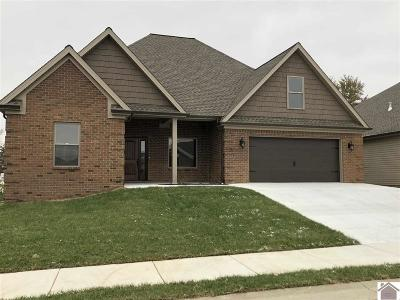 Paducah Single Family Home For Sale: 5381 Shelldrake Lane