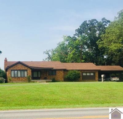 Graves County Single Family Home For Sale: 7883 State Route 58 East