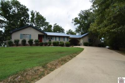 Lyon County, Trigg County Single Family Home For Sale: 238 Mt Zion Road