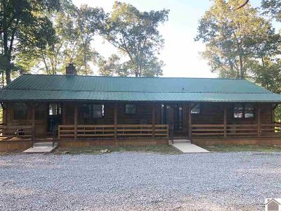 Trigg County Single Family Home For Sale: 257 Stallons Rd