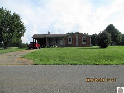 Graves County Single Family Home For Sale: 257 West Slaughter Rd