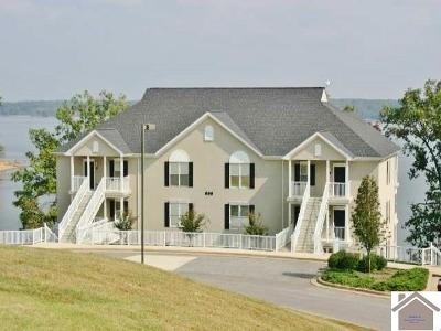 Cadiz, Trigg County, Eddyville, Kuttawa, Grand Rivers Condo/Townhouse For Sale: 698 Moon Bay Dr