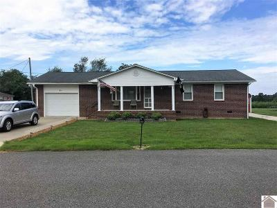 Graves County Single Family Home For Sale: 45 Hailey Circle