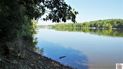 Residential Lots & Land For Sale: Breckenridge Pt.