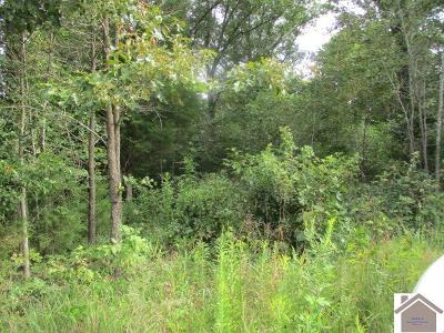 Residential Lots & Land For Sale: Blue Springs Rd
