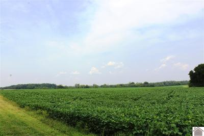 Trigg County Farm For Sale: Orten Road