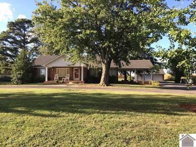 Hickory Single Family Home For Sale: 428 849 W