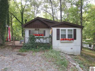 Manufactured Home For Sale: 31 Shady Lane