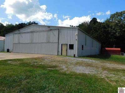Calloway County Single Family Home Contract Recd - See Rmrks: 351 Turner Airport Lane