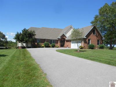 Princeton, Eddyville, Kuttawa, Cadiz Single Family Home For Sale: 224 Caney Creek