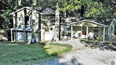 Lyon County, Trigg County Single Family Home For Sale: 511 Willow Lane