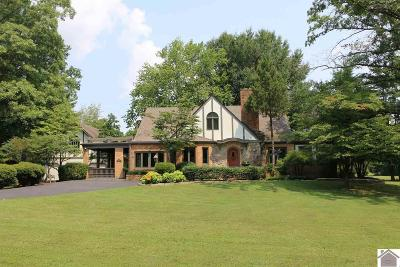 Calloway County Single Family Home For Sale: 1314 State Route 94 West