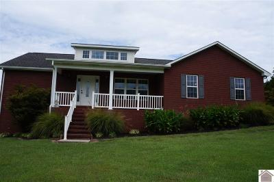Calloway County Single Family Home For Sale: 918 Walston Road