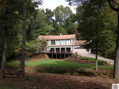 Calloway County Single Family Home For Sale: 519 Hidden Hills Ln