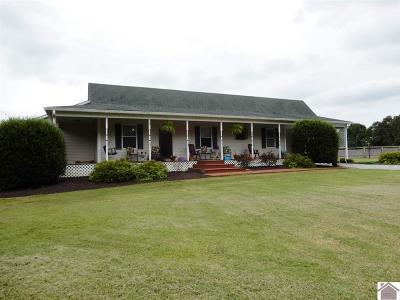 McCracken County Single Family Home For Sale: 1140 E Lovelaceville Florence Station Rd E