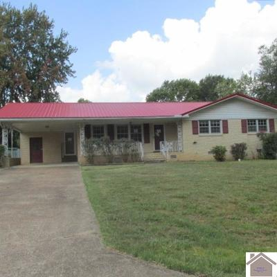 Tennessee County Single Family Home For Sale: 316 Woodlawn St.