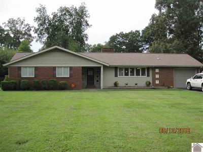 Murray Single Family Home For Sale: 802 Minerva Place