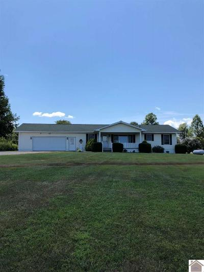 Graves County Single Family Home For Sale: 9990 St Rt 945