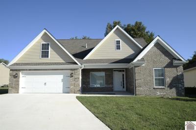 McCracken County Single Family Home For Sale: 5371 Shelldrake Lane