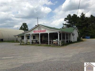 Marshall County Commercial For Sale: 15649 Hwy 68