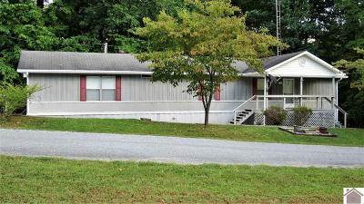 Cadiz KY Manufactured Home For Sale: $54,900