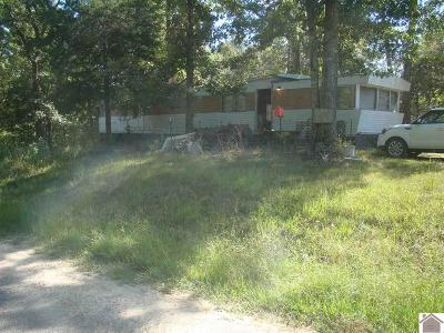 Cadiz KY Manufactured Home For Sale: $25,000