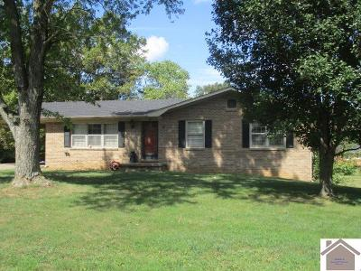 Trigg County Single Family Home For Sale: 161 Sunset Cr