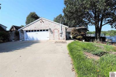 Gilbertsville Single Family Home For Sale: 163 Rockcastle