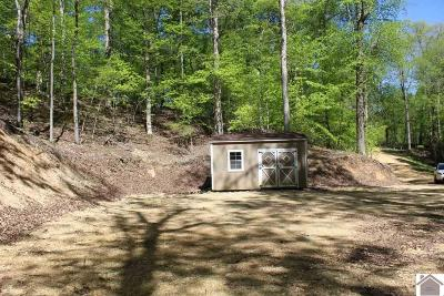 Lyon County Residential Lots & Land For Sale: 300 Hillside Trail