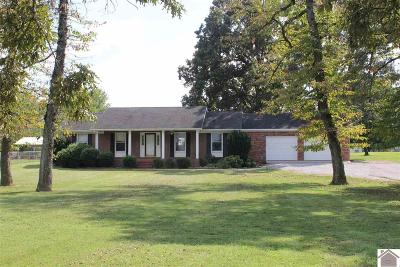Calloway County Single Family Home For Sale: 2755 S 121