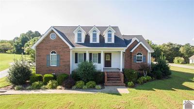 Marshall County Single Family Home For Sale: 219 Stonebridge Dr.