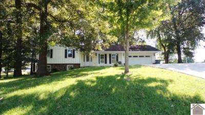 McCracken County Single Family Home For Sale: 140 Ken Lane