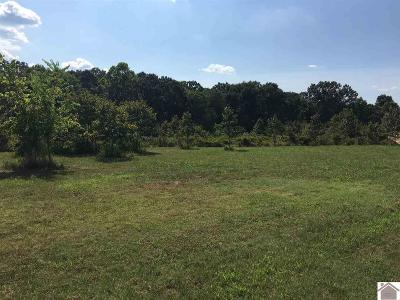 Calloway County Residential Lots & Land For Sale: Lot 49 Western Shores