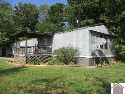 Trigg County Manufactured Home For Sale: 16726 Linton Rd
