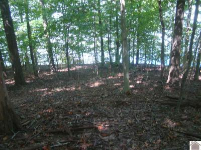 Trigg County Residential Lots & Land For Sale: 264 Jeorpardy Lane