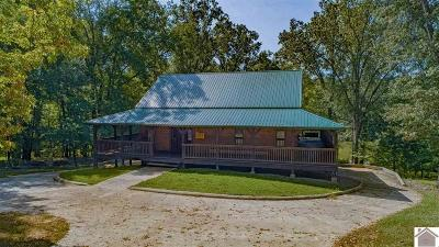 Cadiz, Grand Rivers, Trigg County, Eddyville, Kuttawa Single Family Home For Sale: 283 Holiday Way