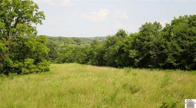 Trigg County Residential Lots & Land Contract Recd - See Rmrks: Coyote Ridge Rd.