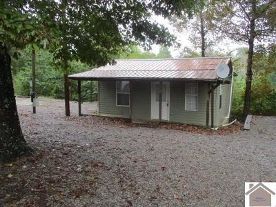 Trigg County Single Family Home For Sale: 564 Dixon Rd