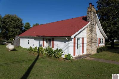 Livingston County Single Family Home For Sale: 114 N. Hayden Avenue