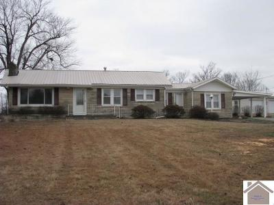 Benton KY Single Family Home For Sale: $124,900