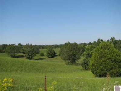 Residential Lots & Land For Sale: 725 Jake Dukes
